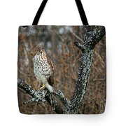 Coopers Hawk 0745 Tote Bag