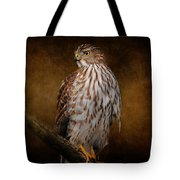 Coopers Hawk Portrait 1 Tote Bag