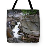 Coos Canyon 1558 Tote Bag