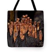 Copper Candles--junkyard Macro No. 3 Tote Bag