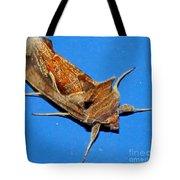 Copper Crest Shield Moth Tote Bag
