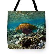 Coral Cruiser Tote Bag