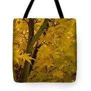 Coral Maple Fall Color Tote Bag