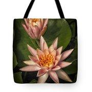 Coral Pink Water Lilies Tote Bag
