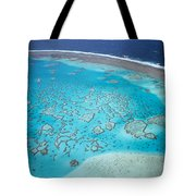 Coral Reef Capricornia Cays Np Tote Bag