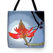 Coral Tree Tote Bag by Ben and Raisa Gertsberg
