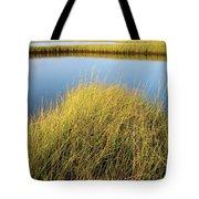 Cordgrass And Marsh, Southern Tote Bag