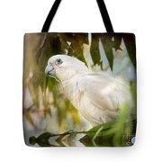 Corella In Morning Light Tote Bag