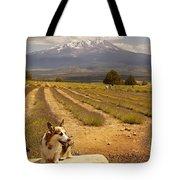 Corgi And Mt Shasta Tote Bag
