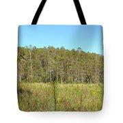 Corkscrew Swamp 1 Tote Bag