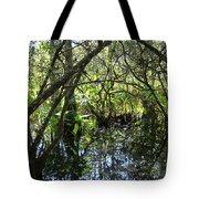 Corkscrew Swamp 3 Tote Bag