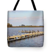 Cormorants And Seagulls On Old Dock Near Blackwater  National Wildlife Refuge Near Cambridge Md Tote Bag