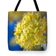 Cornelian Cherry. Cornus Mas. European Cornel Tote Bag