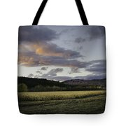 Cornfield Sunset Tote Bag