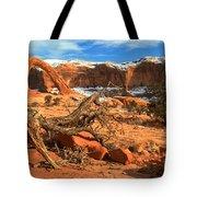 Corona Canyon Tote Bag