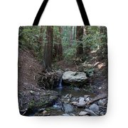Corte Madera Creek On Mt. Tam In 2008 Tote Bag