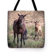 Cortez Colorado Mustangs Tote Bag