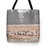 Corvus Field Tote Bag