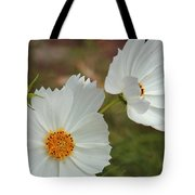 Cosmos Family Tote Bag