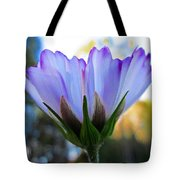 Cosmos Petals Up Tote Bag