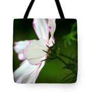 Cosmos Profile Tote Bag