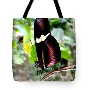 Costa Rican False Postman Butterfly Tote Bag