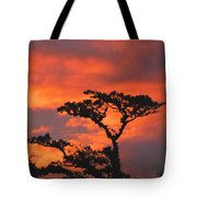 Costa Rican Sunset Tote Bag
