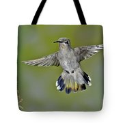 Costas Hummingbird Tote Bag
