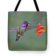 Costas Hummingbird At Flower Tote Bag