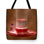 Costa's Hummingbird Keeping Guard Tote Bag