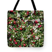 Cotoneaster Bush Background Tote Bag