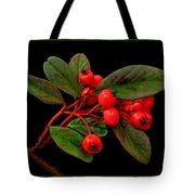 Cotoneaster Tote Bag