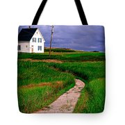 Cottage Among The Dunes Tote Bag by Edward Fielding