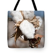 Cotton Bolls  Tote Bag
