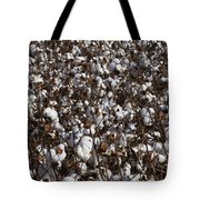 Cotton By The Acre In Limestone County Tote Bag