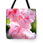 Cotton Candy Gladiolus Tote Bag