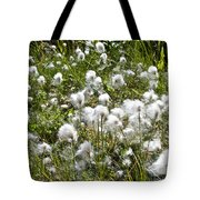 Cotton Grass On Homestead Trail In Homer-ak- Tote Bag