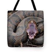 Cotton Mouth Tote Bag