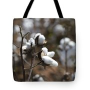 Cotton Southern Gold Tote Bag