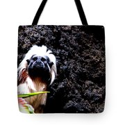 Cotton Top Tamarin Tote Bag