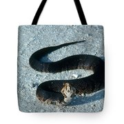 Cottonmouth Threat Display Tote Bag