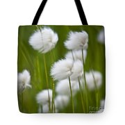 Cottonsedge Tote Bag