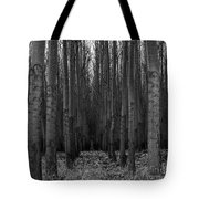 Cottonwood Alley Monochrome Tote Bag