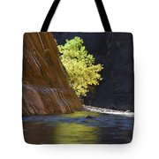 Cottonwood On The Virgin River Tote Bag