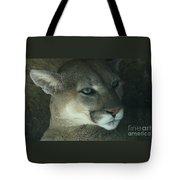 Cougar-7688 Tote Bag