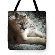 Cougar Country Tote Bag