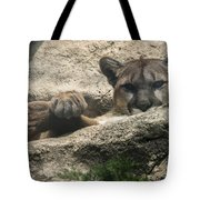 Cougar Spotted Me Tote Bag