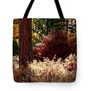 Country Color 28 Tote Bag