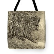 Country Curves And Vultures Sepia          Tote Bag