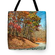 Country Curves And Vultures Tote Bag